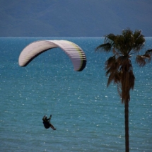 Paragliding_Albania_9th_FAI_tree_sea_parachute